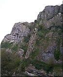 ST4654 : Cheddar Gorge by Pam Goodey