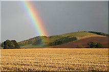 NT6226 : Farmland at Lilliardsedge by Walter Baxter