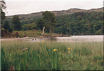 SD2890 : Coniston Water by jirikruta