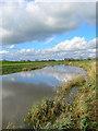 TQ2013 : River Adur by Simon Carey