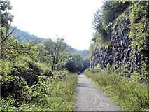 SK1272 : On the Monsal Trail in Chee Dale by Mike Harris
