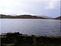 B8514 : Lough Ascardan - Tor and Meencorwick Townlands by Mac McCarron