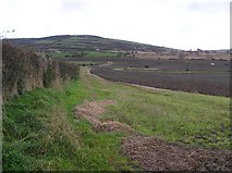 C3320 : Mullenny Townland by Kenneth  Allen