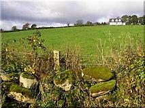 C3321 : Hillhead Townland by Kenneth  Allen