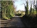 C3516 : Road near Portlough by Kenneth  Allen