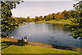 SJ3787 : The leaves are just turning - Sefton Park lake, Liverpool by Stephen Halpin