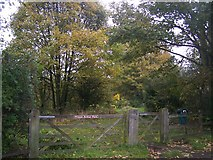 TQ7668 : Entrance to Prince Arthur Park and allotments by David Anstiss