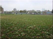 TQ3283 : Shoreditch Park by Oxyman