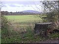 SJ5311 : A stump, a field & The Wrekin by Row17