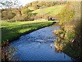 SN9696 : Afon Carno from Pont y Dreflan by Penny Mayes