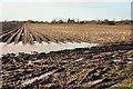 TA0044 : Potato field near Leconfield by Peter Church