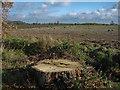 TL3961 : Stubble field by Hugh Venables