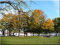 ST3186 : Autumn colour, Mendalgief Road by Robin Drayton