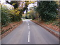 TM2241 : Approaching the  A1156 Felixstowe Road on The Street by Adrian Cable