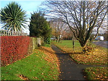 TM0659 : Footway in Stowupland by Andrew Hill