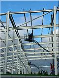 TL8364 : Asda store framework, Bury St. Edmunds by John Goldsmith
