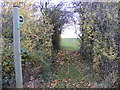 TM3468 : Segmore Lane footpath to Mill Road by Adrian Cable