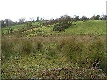 H5657 : Rarogan Townland by Kenneth  Allen