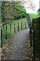 NZ0416 : Path by Barnard Castle by David Lally