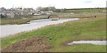 SH3568 : The marshy eastern bank of Afon Ffraw opposite Aberffraw village by Eric Jones