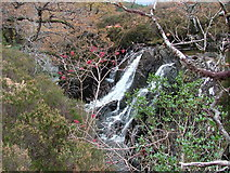 NM8464 : Waterfall on Strontian River by Richard Laybourne