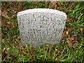 NX3978 : Covenanters Grave, Caldons by David Baird
