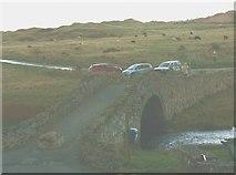SH3568 : Grazing cattle on the dunes of Tywyn Aberffraw by Eric Jones