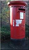 TL4920 : E II R pillar box by Thomas Nugent