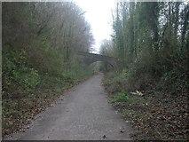 ST9102 : Railway footbridge, Spetisbury by Mike Faherty
