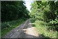 TL6857 : Bridleway past Lucy Wood by Hugh Venables