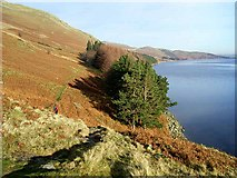 NY4714 : Haweswater below Laythwaite Crags by Oliver Dixon