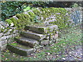 NY9166 : (Horse) mounting steps, St. Michael's Church, Warden by Mike Quinn