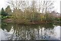 TQ5840 : Island in the lake, Grosvenor Recreation Ground by N Chadwick