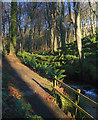 SC2370 : The footpath through Colby Glen by Andy Stephenson