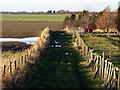 TA2425 : Footpath to Keyingham Drain by Andy Beecroft