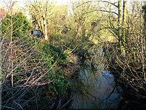 TM3464 : River Alde from Rendham Bridge, downstream by John Goldsmith