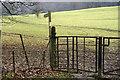 SD4980 : Footpath to Haverbrack by Tom Richardson