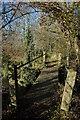 SO7943 : Footbridge in Lower Arles Wood by Philip Halling