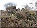 NS3377 : Murrays Farm (ruin) by Lairich Rig