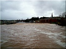 SX9291 : The River Exe by Jan Baker