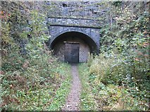 SK1971 : Headstone Tunnel by David Stowell