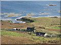 NF8971 : Croft at Blashaval by Dannie Calder