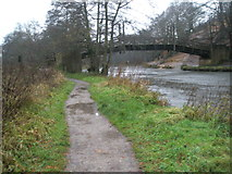 SU9948 : View along to the bridge linking Shalford Park to the riverside footpath by Basher Eyre