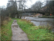 SU9948 : Bridge leaving Shalford Park as seen from the east bank by Basher Eyre