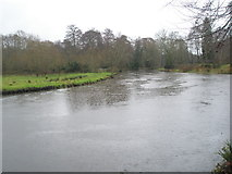 """SU9948 : Rain falling """"steadily"""" on the River Wey at Guildford by Basher Eyre"""