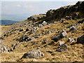 SD5579 : Newbiggin Crags by John H Darch