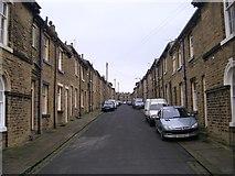 SE1338 : Herbert Street - Albert Terrace by Betty Longbottom