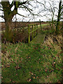 TA1832 : Footbridge on the Wyton to Preston path by Andy Beecroft