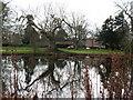 SE3954 : Lake at Ribston Hall by Gordon Hatton
