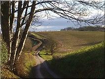 SO7334 : The road to Bromesberrow by Bob Embleton